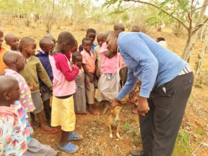 Teaching kindness to dogs in Kenya | Vet Treks Foundation